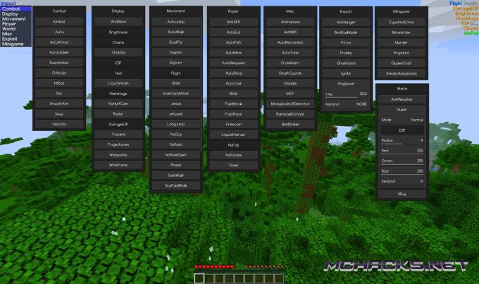 Minecraft Hacked Clients – MCHACKS net